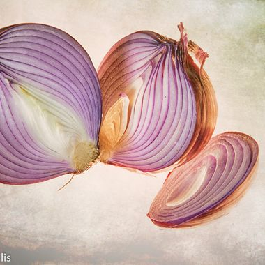 Sliced and suspended onions