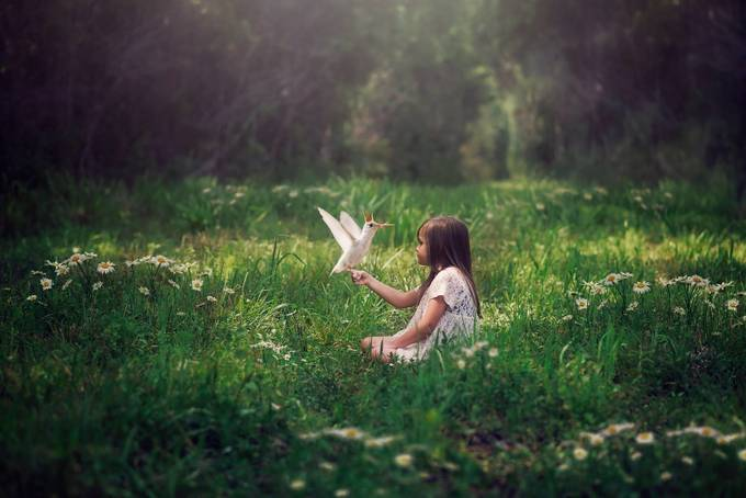 Meeting in the Meadow by ChrystalOlivero - Sitting In Nature Photo Contest