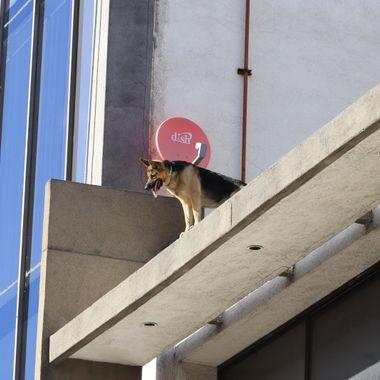 On top of roof in Tijuana