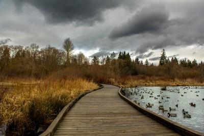 Lake before rain