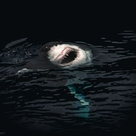 Great white sharks are surprise hunters and average 25 miles per hour when they break the surface attacking prey!