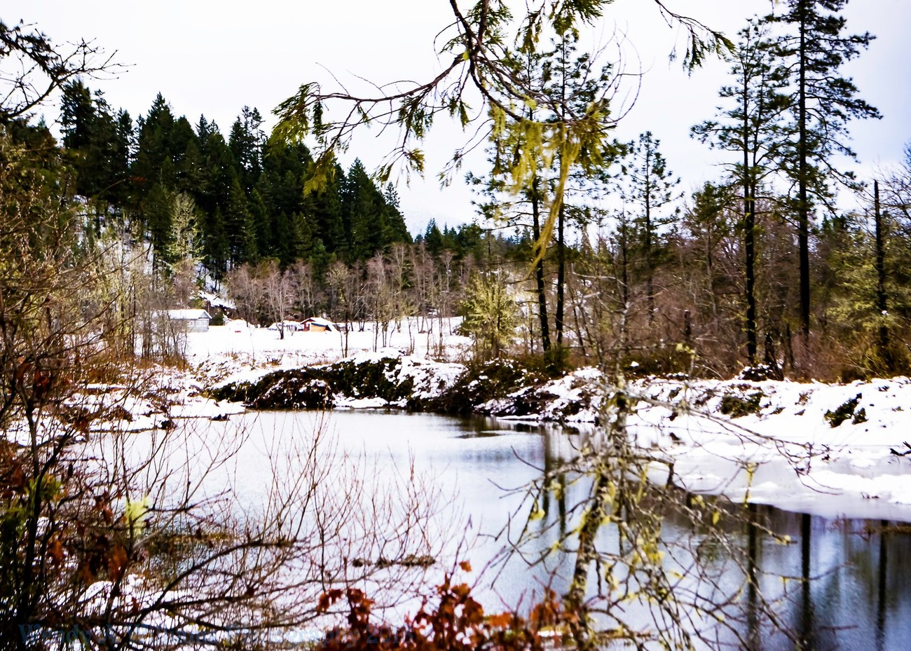 This year we had days of snow in Southern Oregon and then it would disappear so on this day I went out to catch the beauty of snow before it left again.