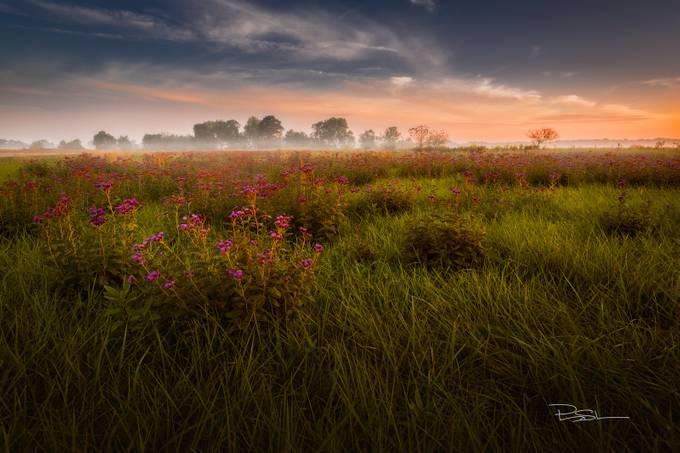 Morning Revelation 2 by Hstarr - Rural Vistas Photo Contest