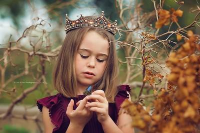 Queen of Butterflies