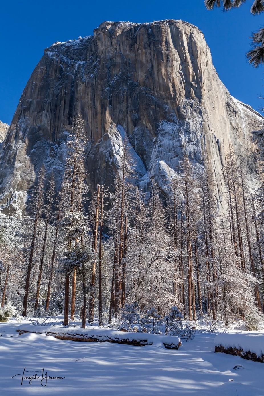 Mighty El Cap from Below