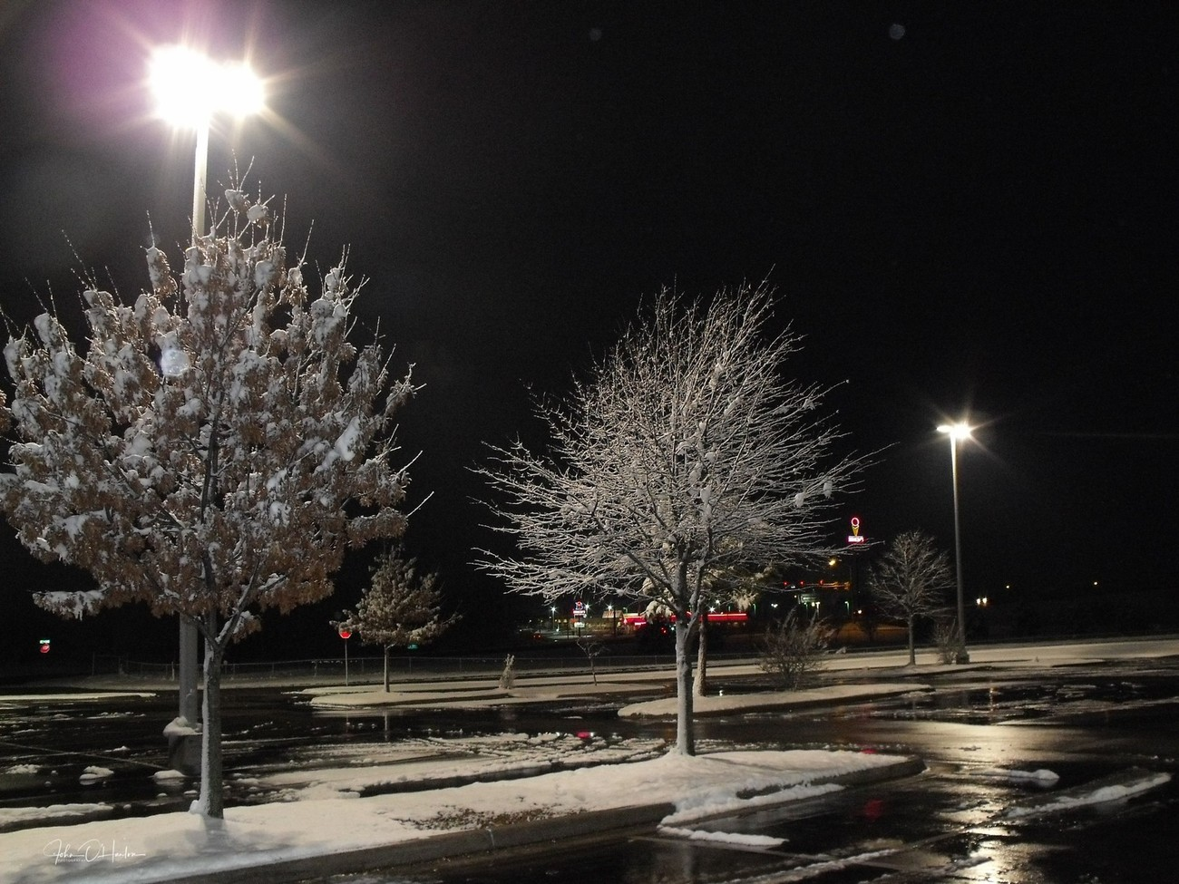 snow art1