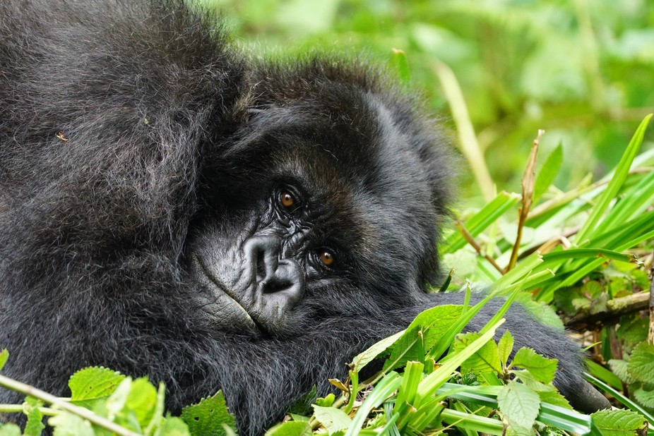 Rwanda Mother
