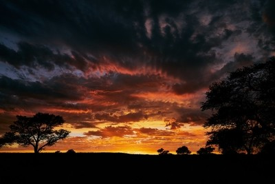 Dramatic Sunrise in the Kalahari Desert