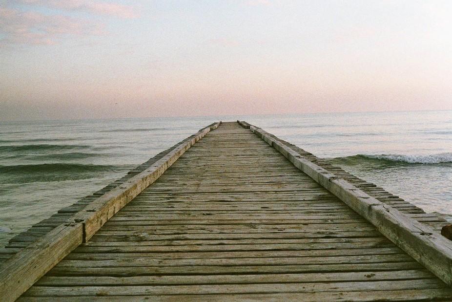 Minolta and the sea