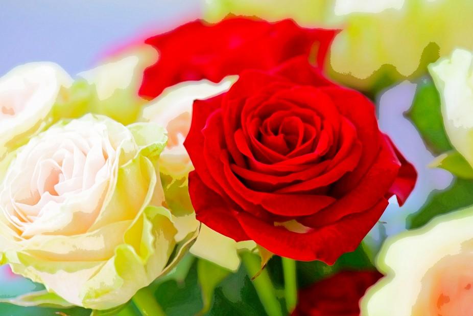 RosesWC3