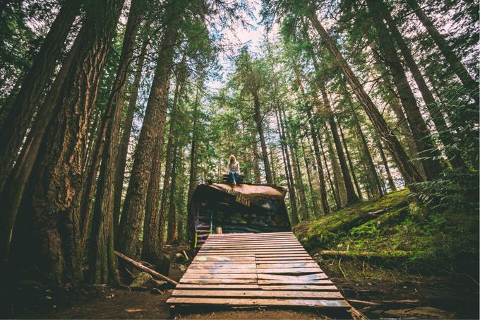 Whistler BC biking trails at the train wreck by lukechadwickjones - Image Of The Month Photo Contest Vol 31