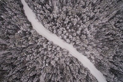 Wintry road