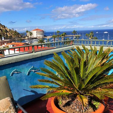 Rooftop view from the Avalon Hotel on Catalina Island!