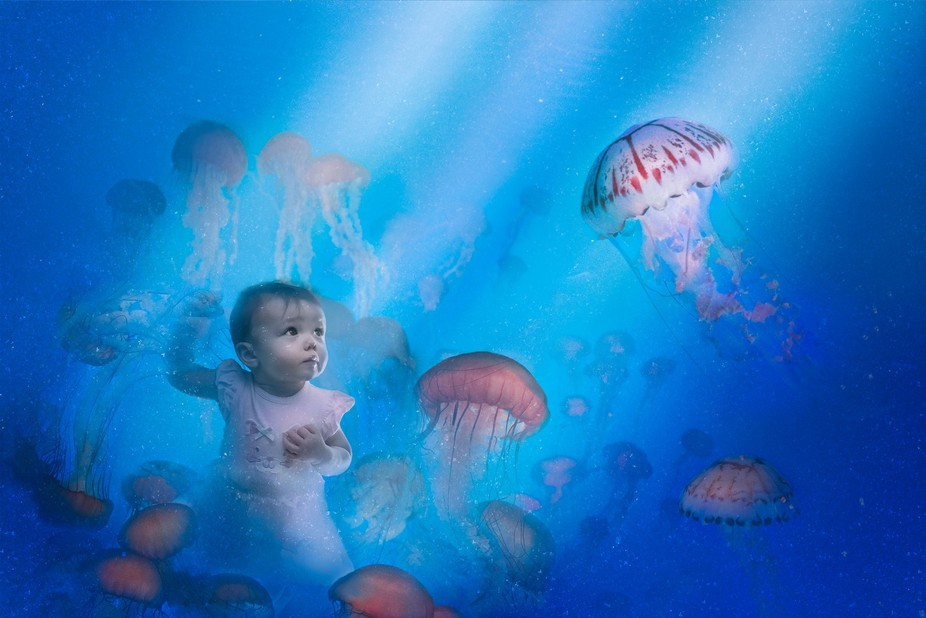 Baby & the Jellies