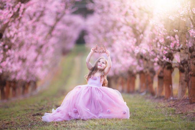 Princess Dreams by lindibeckett - Pastel Colors Photo Contest