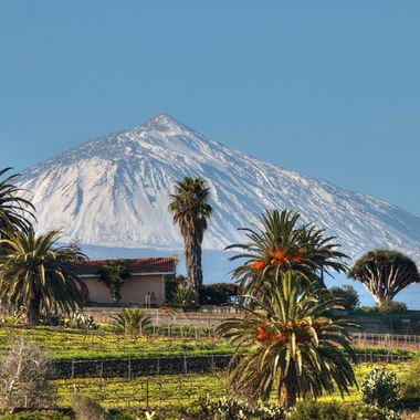 View of Volcano Teide in winter .