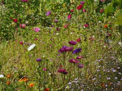 Природные самоцветы