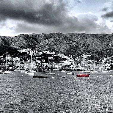 Harbor standout!