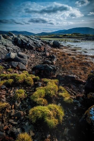 Low tide, Owenea estuary, Donegal