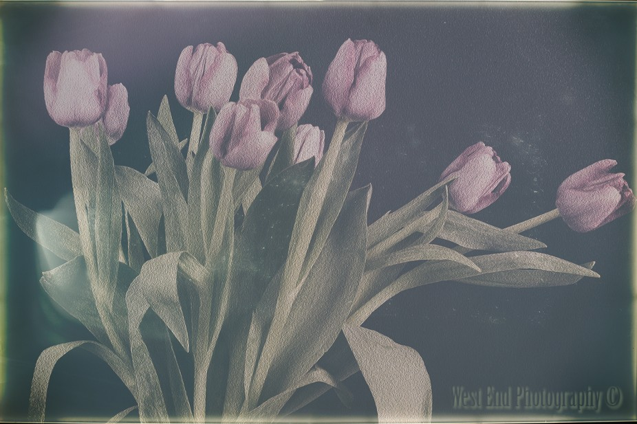 Oil painting Vintage