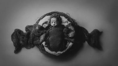 Newborns First Nest