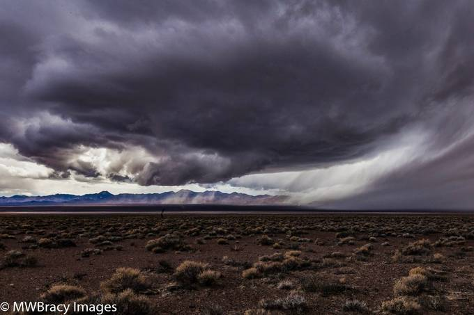 Desert storm II