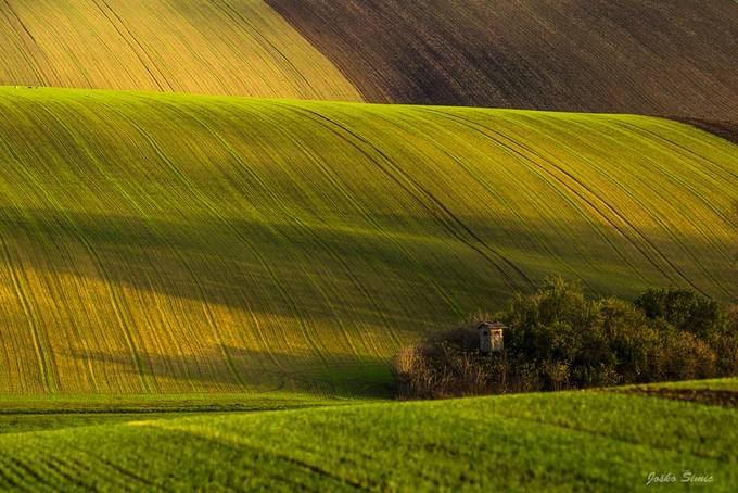 Moravian fields by jokoimic - Image Of The Month Photo Contest Vol 31