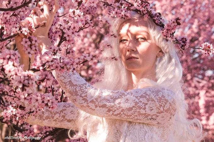 Queen Of Spring by xtrEEmakers - Pink Photo Contest