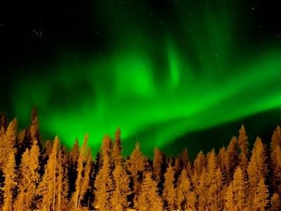 Northern Lights Near Work