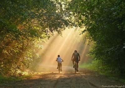Sun & Son