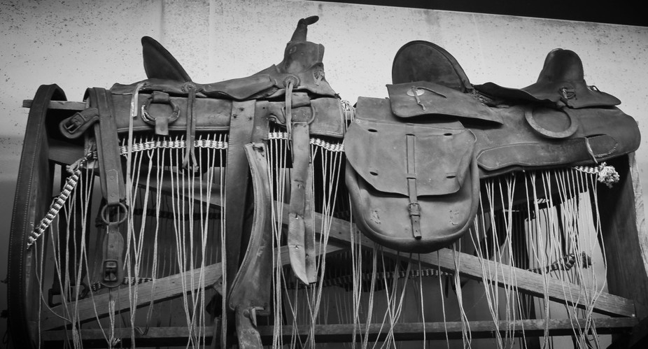 A set of very old saddles