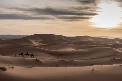 Sahara Desert-Morocco