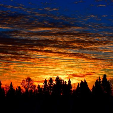 Just another beautiful backyard sunrise this week Nikon D 3400 sv
