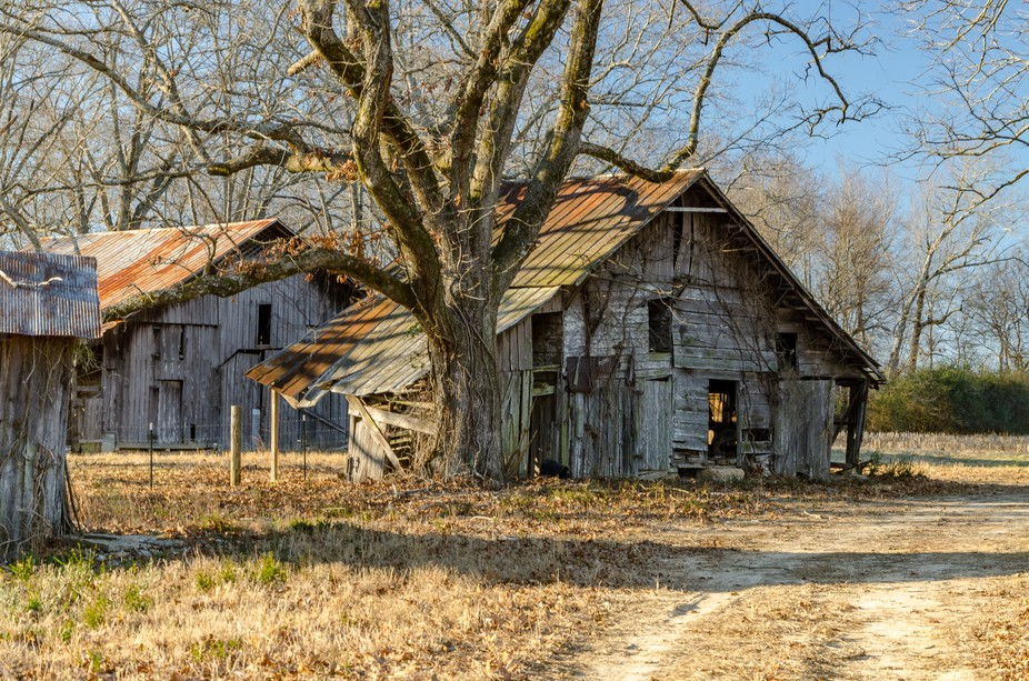 An old barn on a quiet back road In TN.