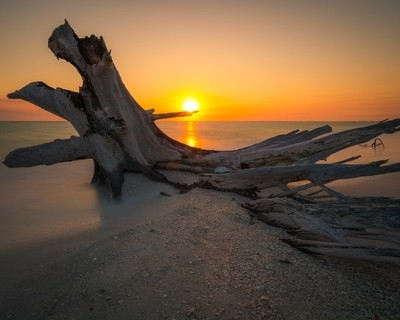 Sunset Hunting