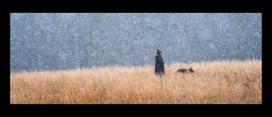 In a snow storm in Cades Cove in the Smoky Mountains Ingrid walks her dog Ox wearing the most ama...