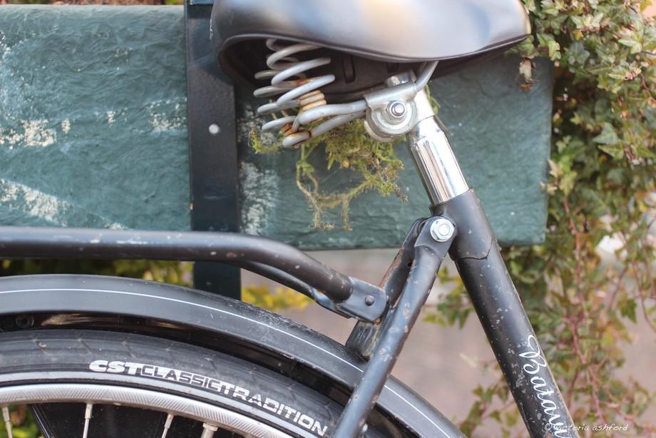 bike close up 2