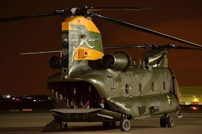 For as cute as Nellie may be, this Chinook looks like it has teeth & a wide open mouth!