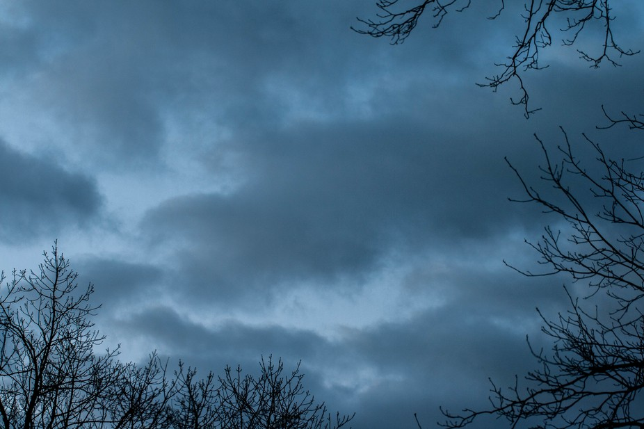 View outside my window at 6:30 am.  The clouds were slowly moving in to bring in this moody setting.