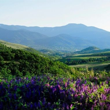 View of Ashland
