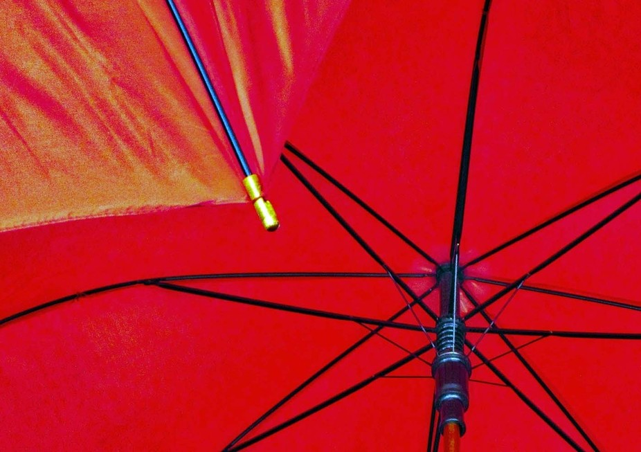 A couple dozen identical red umbrellas are handing in the local public library's entry a...