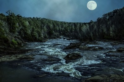 Misty Night in the Woods with a River Stream Under the Moon