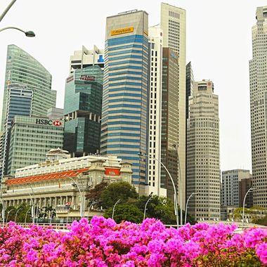 Modern Singapore!