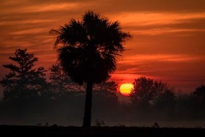 Sunrise at Moore Haven Lock, Moore Haven, FL