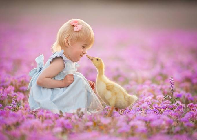 Easter Babies by lisaholloway - Pink Photo Contest