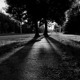 Two trees, like silent guards, standing in the center of the street and keeping the path from the rays of the scorching sun; shadows from their t...