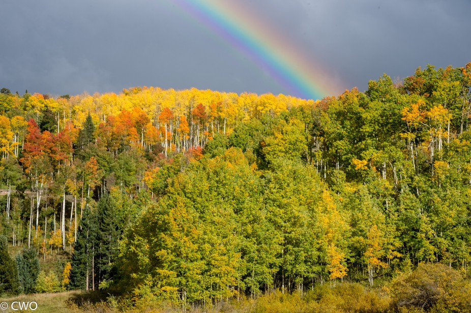 Week long trip for photography near Telluride Co. Storms during the fall created some spectacular...