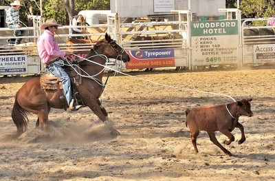 Woodford Rodeo