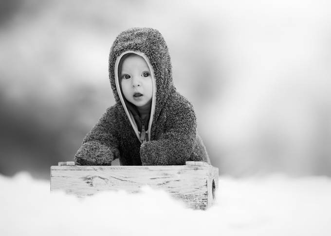 Winter bear by danielventer - Babies In Black And White Photo Contest
