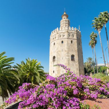 a shot taken of the Torre Del Oro in Seville, Spain
